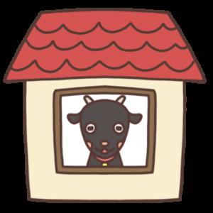 お家の中にいる黒ヤギのイラスト