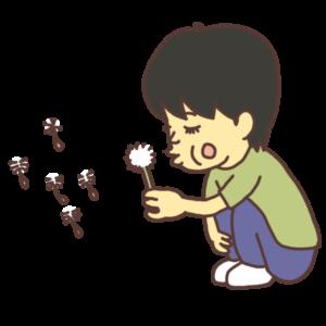 タンポポの種を吹き飛ばす子どものイラスト