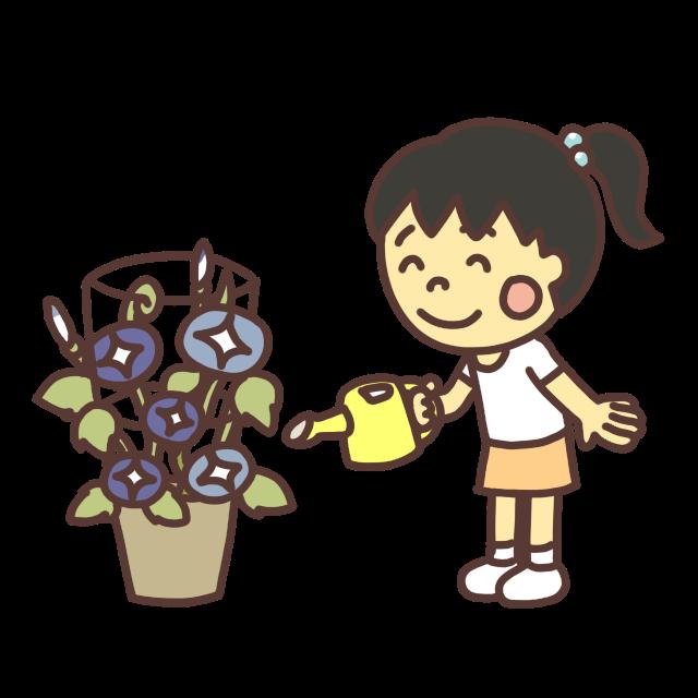 朝顔の花に水をあげる子どものイラストニッコリ